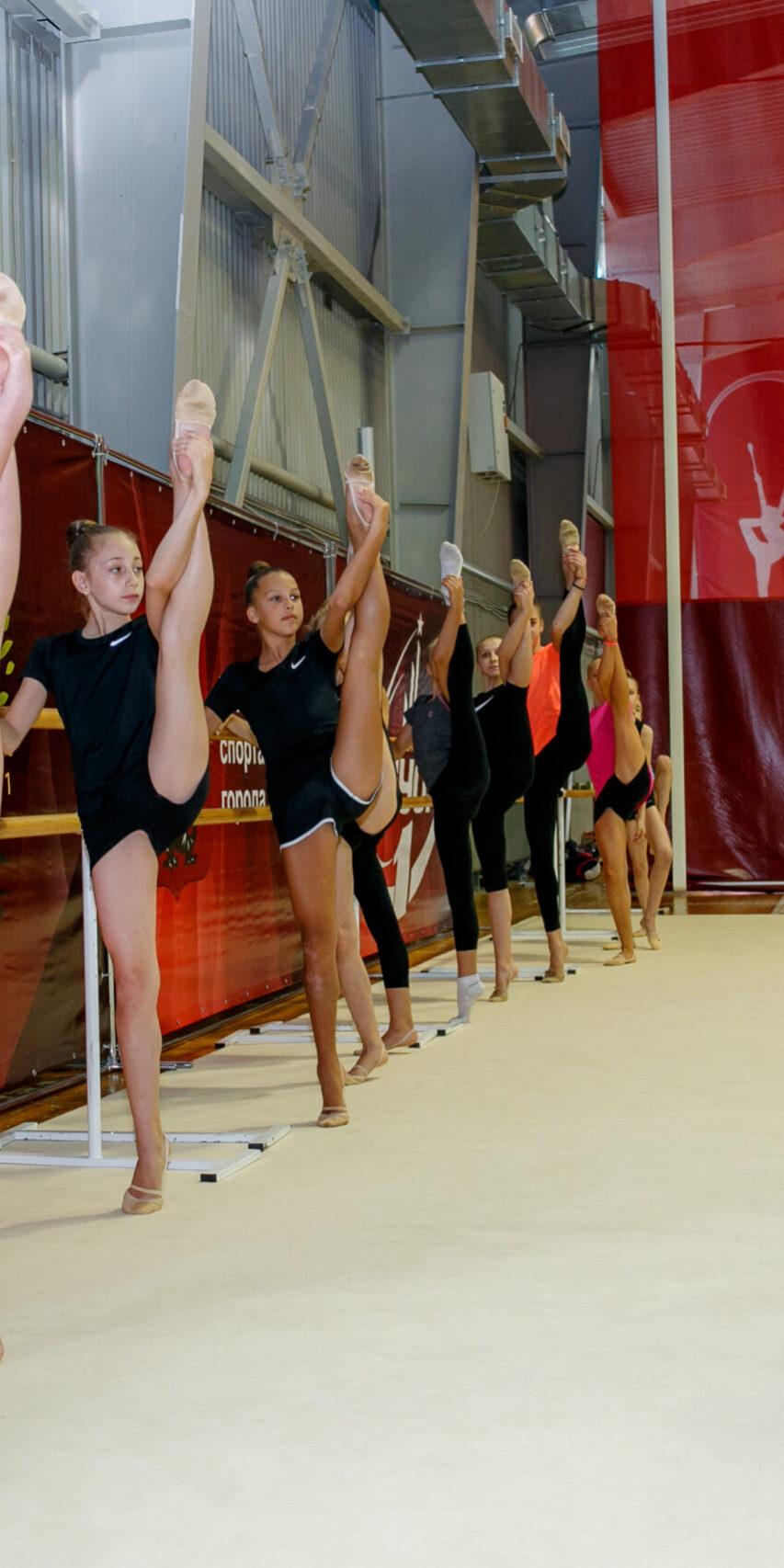 Спортивные клубы москвы спортивной гимнастики образование футбольного клуба динамо москва